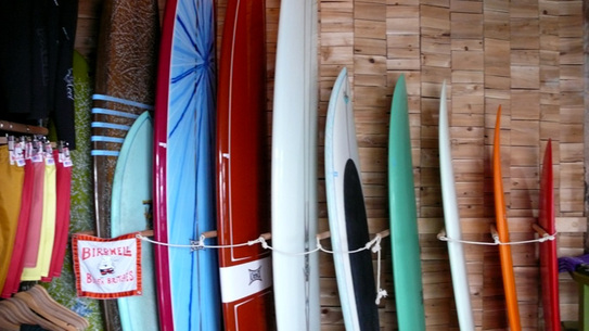 single women in mollusk Jule collection surfboards 570 likes a surfer girls best friend surfboards designed for women  if you're looking for a new log this summer mollusk sf has some.