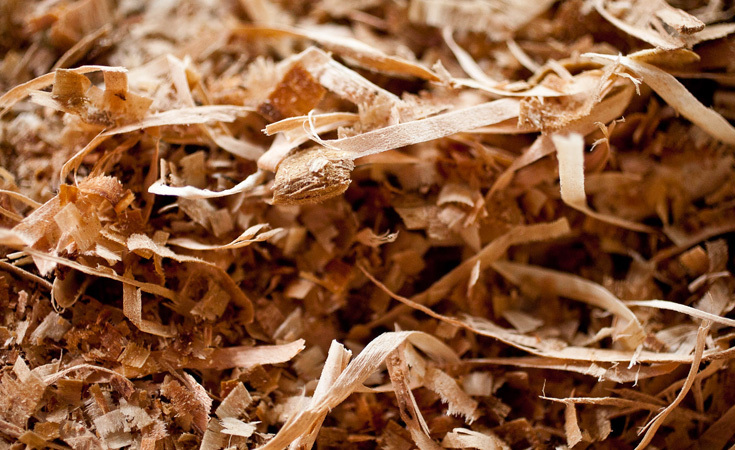 Wood chips on the floor