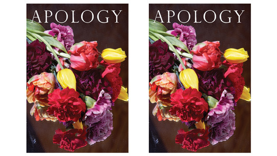First issue of Apology Magazine with a cover photo by Roe Ethridge.